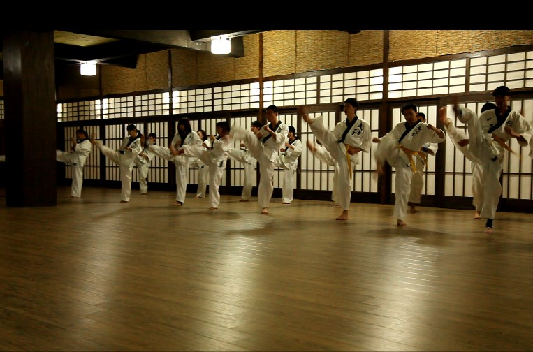 跆拳道馆背景素材